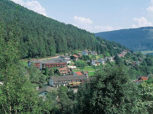 Hotel Waldlust - Baiersbronn