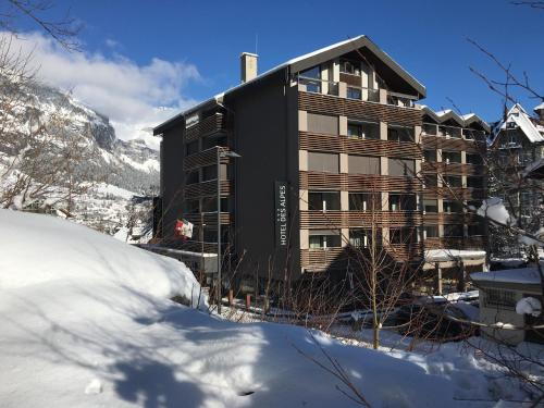 Hotel des Alpes Flims