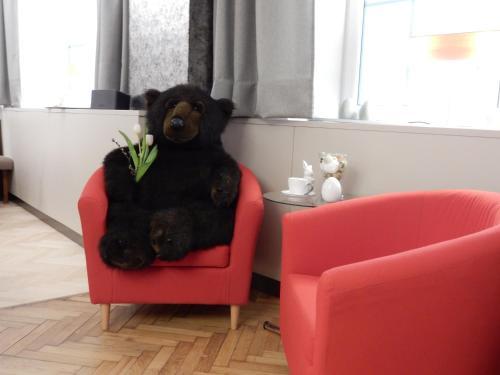 Фото отеля Hotel-garni Schwarzer Bar