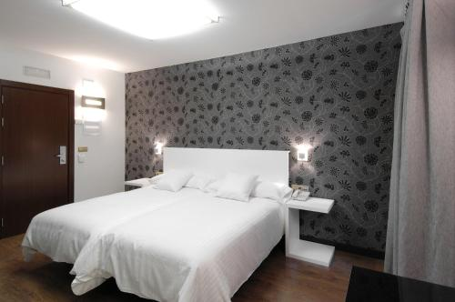 Double or Twin Room Hotel Cienbalcones 20
