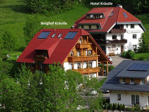 Schwarzwald Aparthotel Kräutle - Accommodation - Feldberg