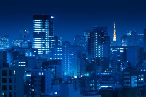 Rihga Royal Hotel Tokyo photo 48