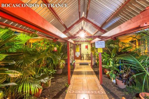 Hotel Bocas Condos Rentals