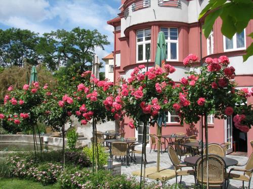 Hotel Villa - image 8