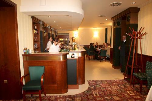 Hotel Villa - image 10