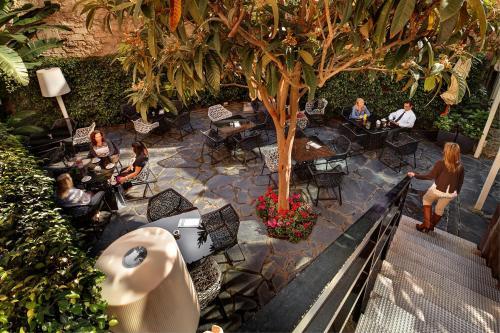 Olivia Plaza Hotel photo 39