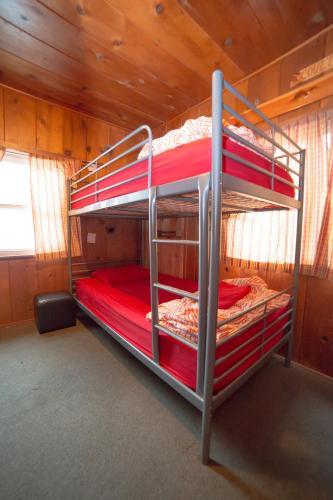 Bed in 8-Bed Mixed Dormitory Room with En suite Bathroom