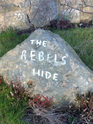 Rebels Hide