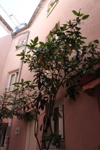 Hôtel Aladin photo 15
