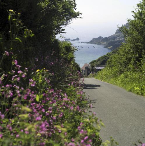 Saints Road, St Martins, Guernsey GY4 6ES, Channel Islands.