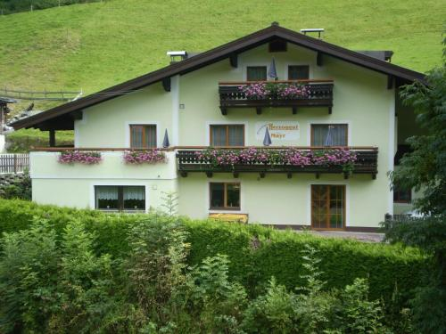 Pension Herzoggut - Accommodation - Zell am See