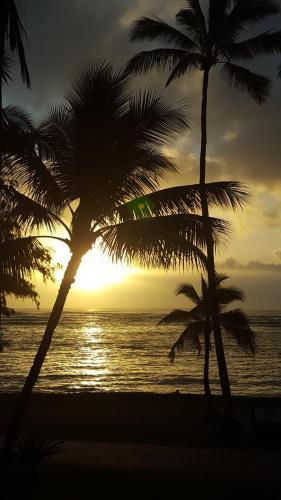 Hotel Coral Reef - Kapaa, HI 96746