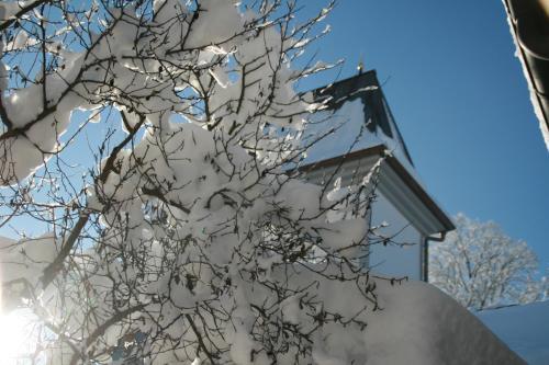 Haus bei der Linden Ferienwohnungen photo 119