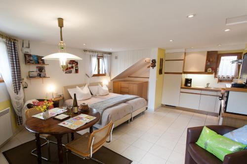 Studio Rouffach - Apartment