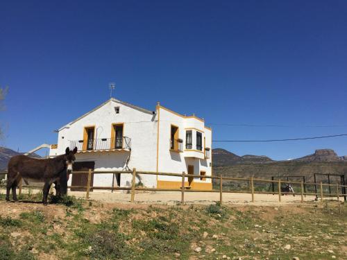 Casa Justo Hovedfoto