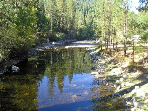Yosemite Lakes Cabin 40