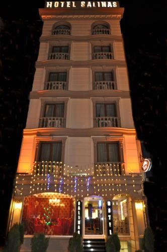 Istanbul Salinas Istanbul Hotel tek gece fiyat