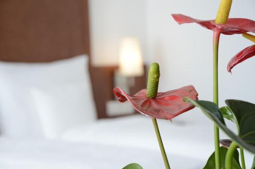 Hotel Weichandhof by Lehmann Hotels photo 5