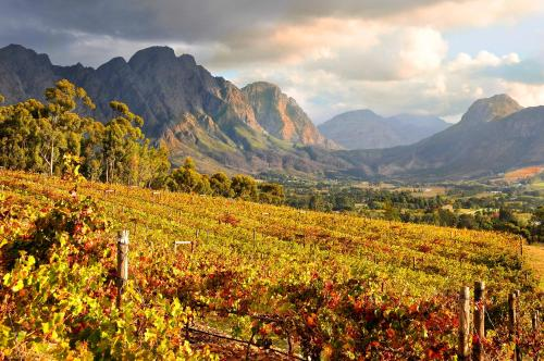 Pass Road, Franschhoek, 7690, South Africa.