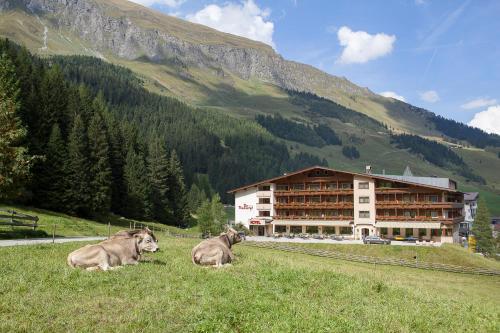 Der Rindererhof Lanersbach-Tux