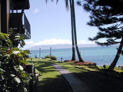 Polynesian Shores #120