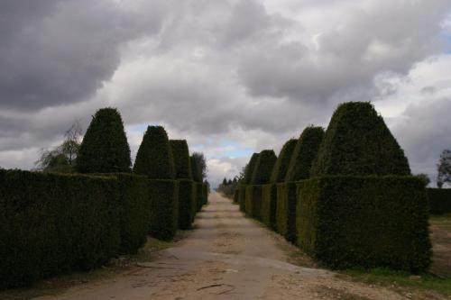 Quinta Da Fata - Photo 8 of 55