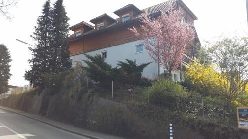 Appartement Mayerhofer House, Pension in Linz bei Gallneukirchen