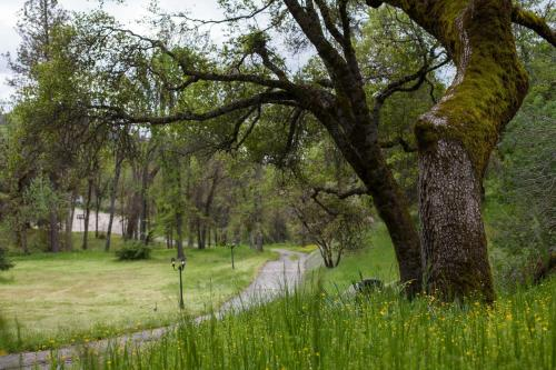 Ravensbrook Inn Yosemite - Oakhurst, CA 93614