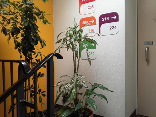 Photo - hotelF1 Montauban