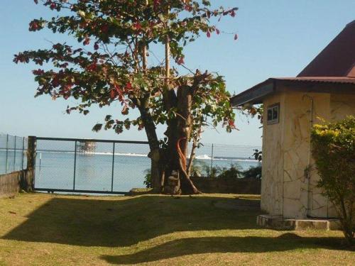 . Bungalows Havae Teahupoo