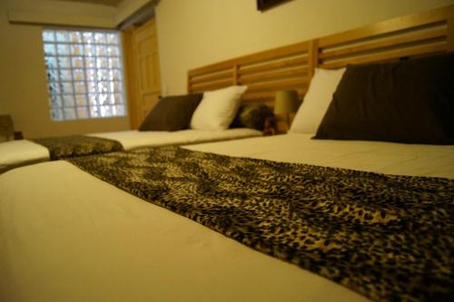 Bed & Breakfast Otoch Balam, Distrito Central
