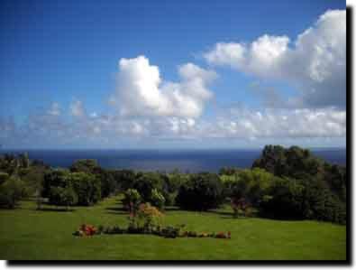 Haiku Organic Gardens - Haiku, HI 96708