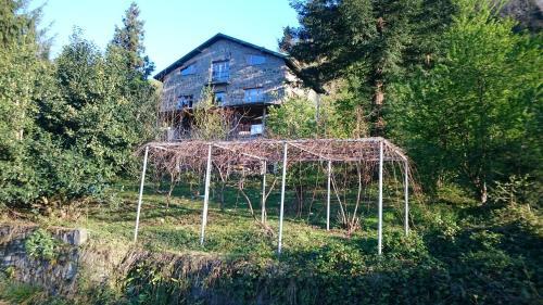 Trabzon Taif Villa online rezervasyon