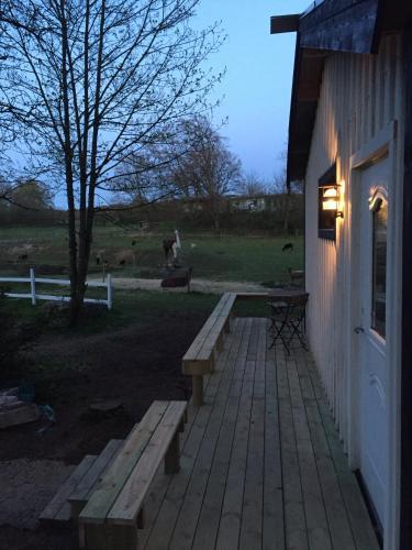 . Farm Stay Happy Dogs Ranch