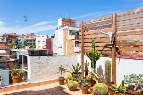 Apartment Atico de Dos Olivos photo 4