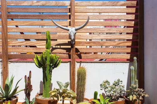 Apartment Atico de Dos Olivos photo 5