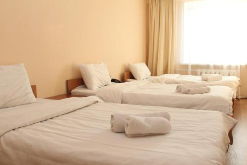 תמונות לחדר Zhassybi Hotel
