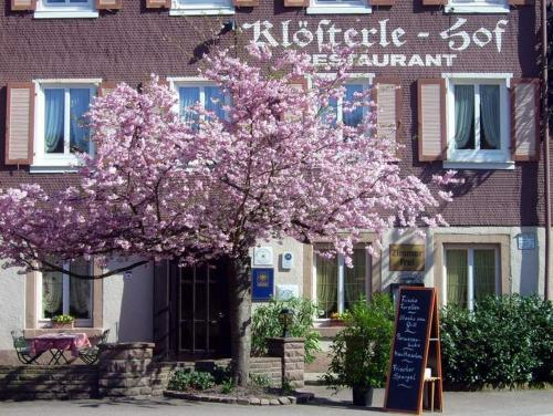Accommodation in Bad Rippoldsau-Schapbach
