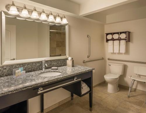Hampton Inn Chicago Downtown/Magnificent Mile Номер с кроватью размера «king-size» — подходит для гостей с нарушением слуха, для некурящих, диван-кровать