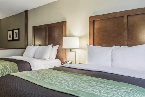 Comfort Inn Suites Sioux Falls Hotel In Sd