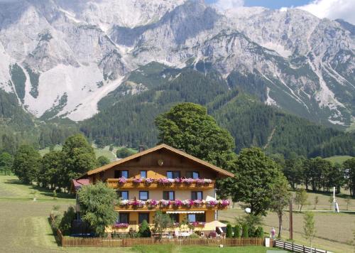 Ferienwohnung Alpenecho - Apartment - Ramsau am Dachstein