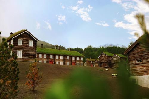 Bjerkeløkkja Bed and Breakfast - Accommodation - Oppdal
