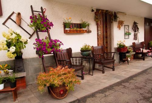 B&B La Gerbolina - Accommodation - San Giusto Canavese