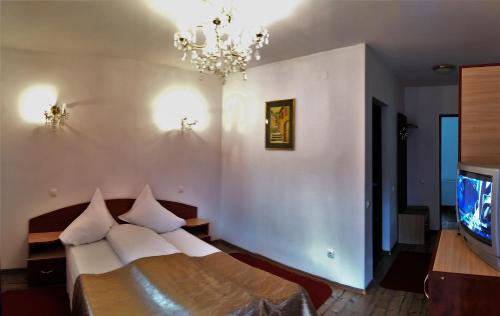 Villa Bambi - Accommodation - Sinaia