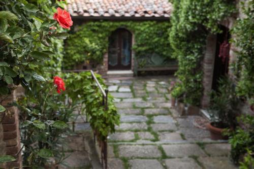Località Lupaia 74, 53049 Montepulciano, Tuscany, Italy.