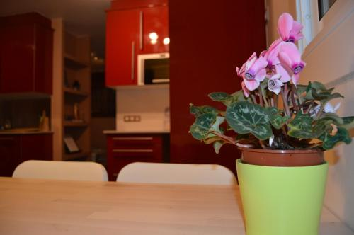 Apartment Pla dels Cirerers photo 28
