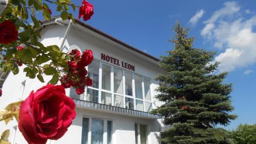 . Hotel Leon