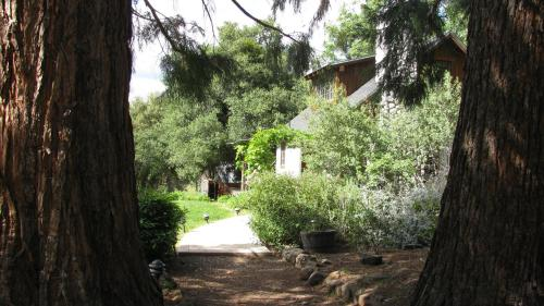 Yosemite Rose Bed And Breakfast - Groveland, CA 95321