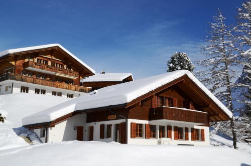 Apartment Dolomit EG 4.5- GriwaRent Grindelwald