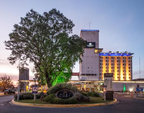 Los Silos Hotel, La Capital